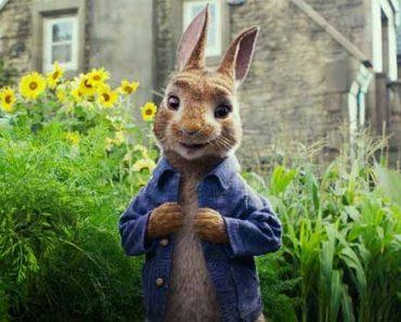 """""""Приключения кролика Питера"""""""