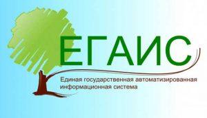 ЕГАИС – специальная программа