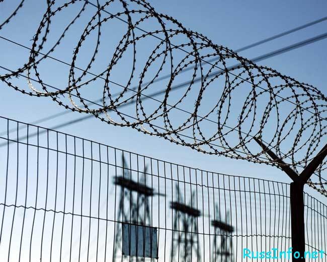 амнистирование осужденных по уголовным делам
