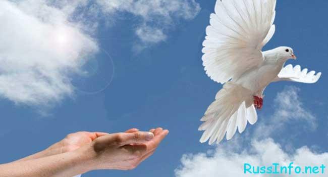 Всемирный день мира