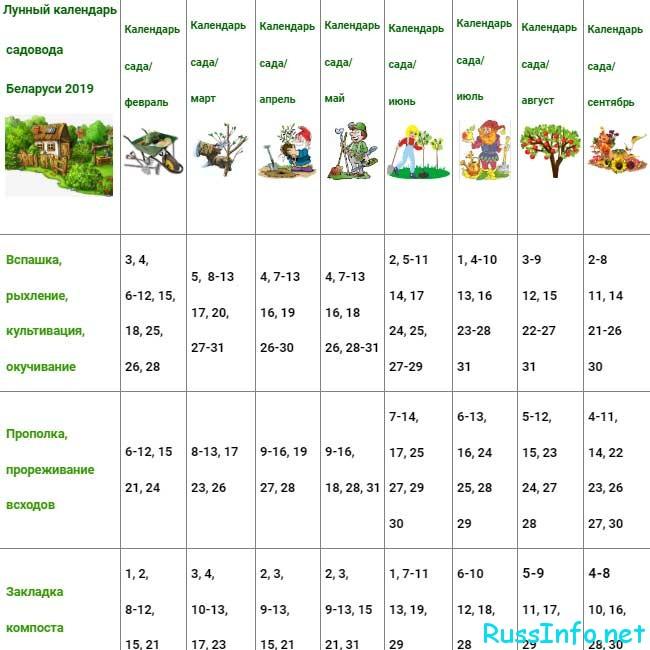 Календарь дачника на 2019 год для Беларуси