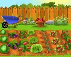 любого дачника или огородника