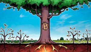Сколько будет стоить Bitcoin