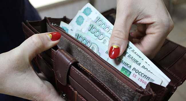 Российские рубли в бумажнике