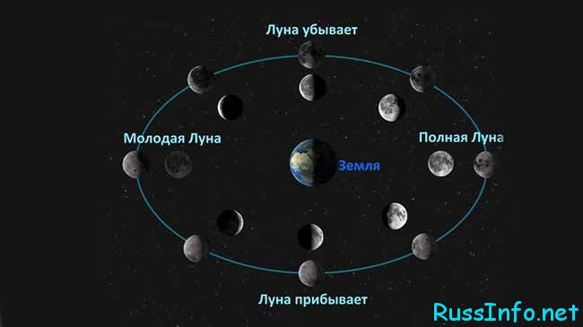 Фазы Луны относительно Земли