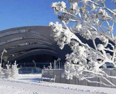 Праздники в декабре в Казахстане