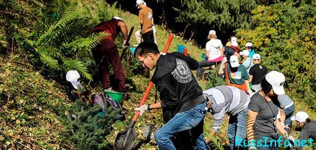 Праздник чистки в Казахстане