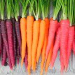 Посадка моркови по лунному календарю на 2022 год
